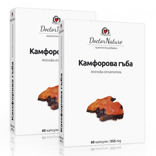 2 броя Камфорова гъба (Antrodia cinnamomea), 2 х 60 капсули